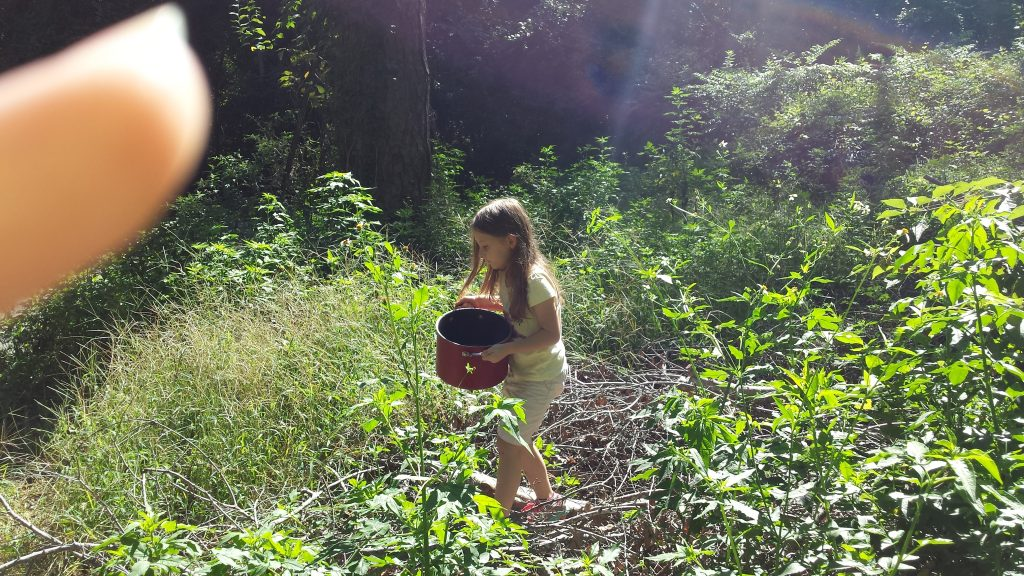 girl in a yellow shirt holding a red pot, walking through green bushes and tall green grass