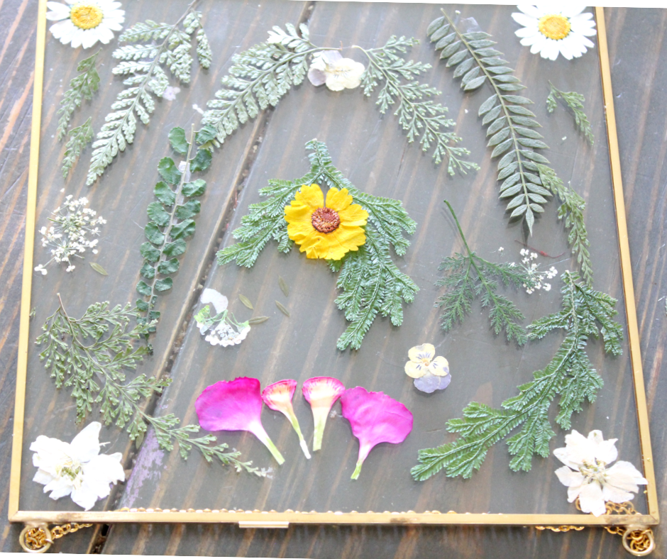 pressed flower frames with lots of greenery and some white and pink flowers