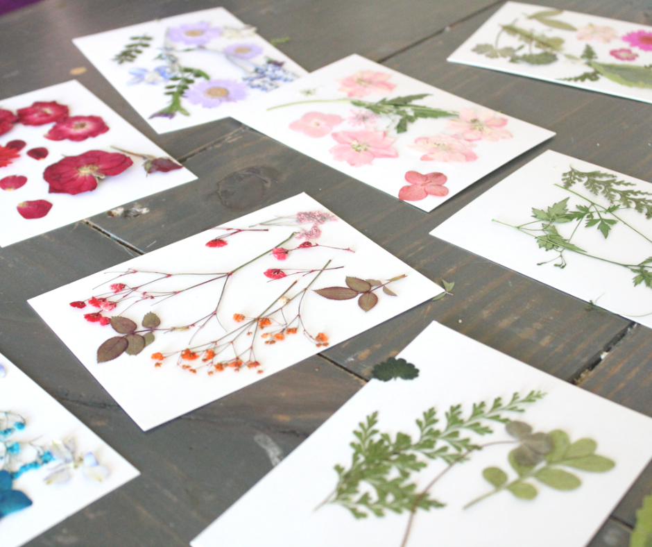pressed flowers on white papers on a table